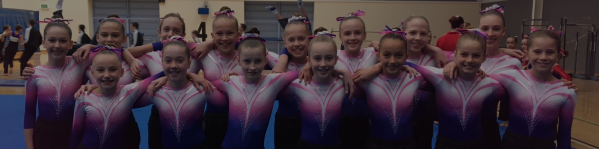 Gymnasts at State Clubs